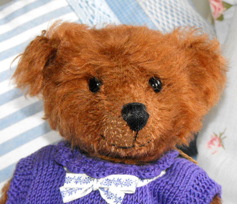 Brown bear in purple dress
